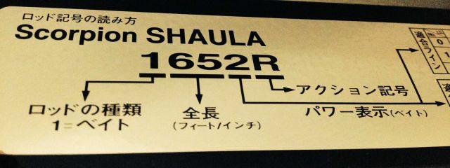 shimano-shaula-impression (1)3-s