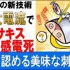 【世界初】電気ショックで感電死 アニサキス殺虫|テレ朝news-テレビ朝日のニュース
