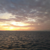 神戸沖堤防へ遠征へ行く時使いたいホテル3選!前日に前入りしよう!